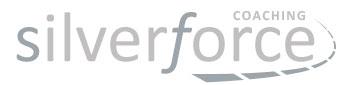 SilverForce_Logo Nicolette